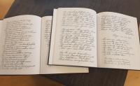 Dagboeken Cornelis Dutmer klein